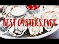 BEST OYSTERS IN NEW YORK
