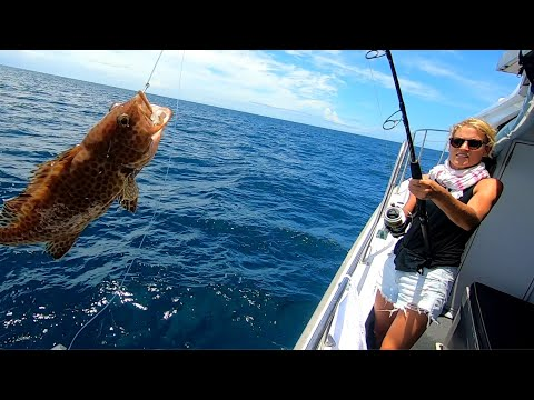 REEF FISHING IN CAIRNS VLOG (SPORT FISHING CHARTER) | 06-03-2019