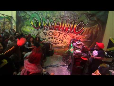 Channel One Soundsystem-Organic Roots Sound System Session