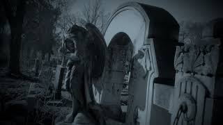Memory Affliction - Bus Stop Cemetery (Official Music Video) Death Doom Metal (2021) Debut Single