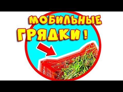 Видео МОБИЛЬНЫЕ ГРЯДКИ НА ДАЧЕ.