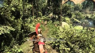 Ryse: Son of Rome - EVGA GeForce GTX 980 Ti (4K, 1440p, 1080p)