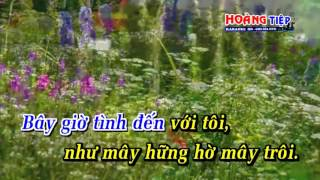 Karaoke Trong Tầm Mắt Đời - Thang Long