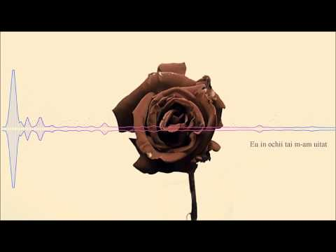 Damian Draghici feat. Feli - Trandafire (karaoke)