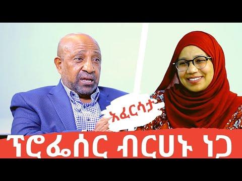 EthioTube አፈርሳታ -ከፕሮፌሰር ብርሃኑ ነጋ ጋር የተደረገ ቆይታ