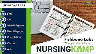 Mastering  Lab Fishbones with Nursing KAMP Course