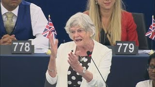 Ann Widdecombe compares EU to slave owners