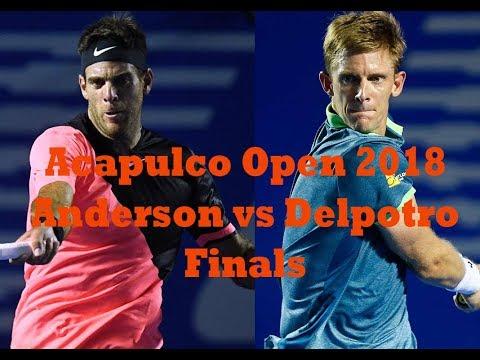Anderson vs Delpotro, Finals ACAPULCO 2018 Highlights