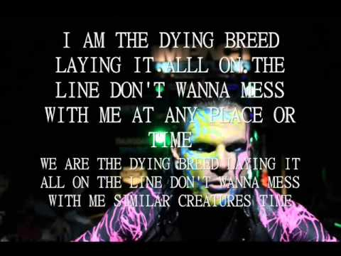 Jeff Hardy Wallpapers 2015 - Wallpaper Cave