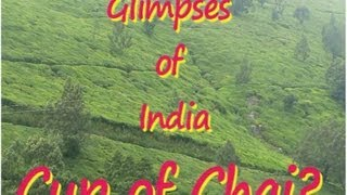 Glimpses of India- Tea Making Process