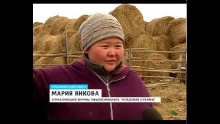 видео Купить колеса для пищевых производств в Москве, цены