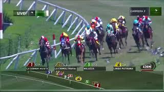 Vidéo de la course PMU PREMIO VITTA