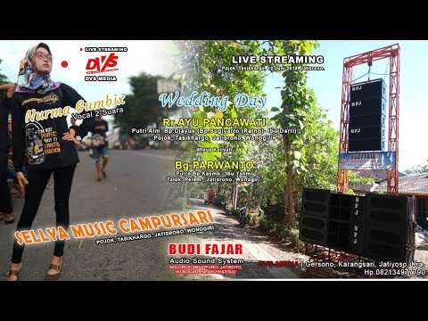 LIVE Wedding AYU & PARWANTO | DVS MEDIA | BUDI FAJAR SOUND [BFJ] | SELLYA MUSIC CAMPURSARI