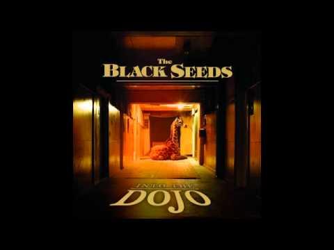 The Black Seeds - Got a Girl