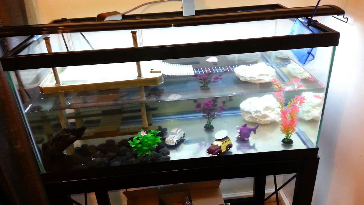 Diy Turtle Tank Topper Diydrywalls Org