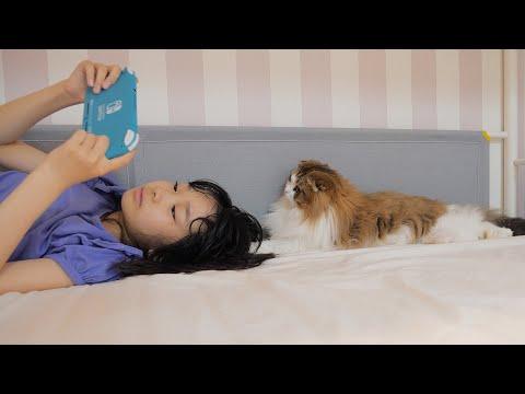 よくベッドの上で娘と過ごしている猫が何をしているかカメラを回してみたら…