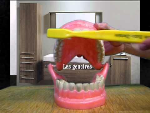 brossage de dents ce1 num ro 2 youtube. Black Bedroom Furniture Sets. Home Design Ideas