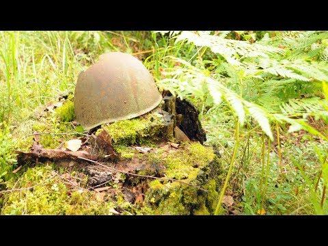 Останки 28 погибших солдат Великой Отечественной войны удалось найти вологодским поисковикам