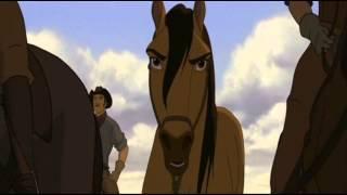 Mustang z Dzikiej Doliny Chcę wolnym być