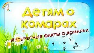 Мультфильм детям о комарах. Интересные факты о комарах для детей(Лето это удивительное время года. Греет солнце, можно понежиться на песочке около воды, и насладиться отдых..., 2015-06-06T06:02:39.000Z)