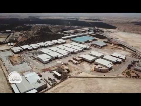 Japan's cooperation with the Jericho Agro-Industrial Park in Palestine