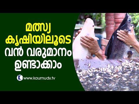 Huge Profit From Fish Farming   Haritham Sundaram EP 123   Kaumudy TV