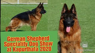 GERMAN SHEPHERD SPECIALITY DOG SHOW|| KAPURTHAL||9815081234 G.R DOG HOME.