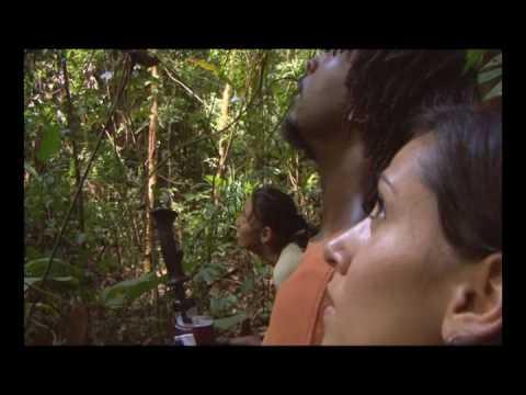Trinidad's NARIVA Wildlife