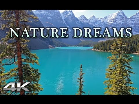 NATURE DREAMS in 4K | 1HR Healing Relaxation Experience w Music  in UHD