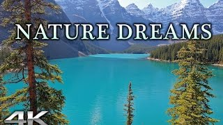 Nature dreams in 4k | 1hr healing relaxation experience w music uhd