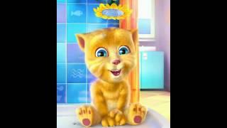 Talking cat sings drag me down(1)