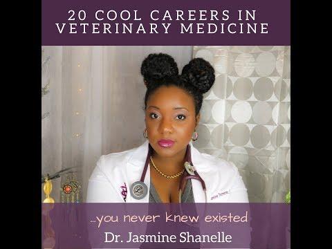 20 Cool Careers in Veterinary Medicine - Dr. Jasmine Shanelle