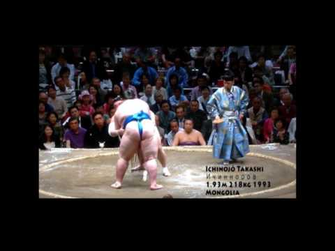 biggest sumo wrestlers ever fattest professional sumo wrestlers all time
