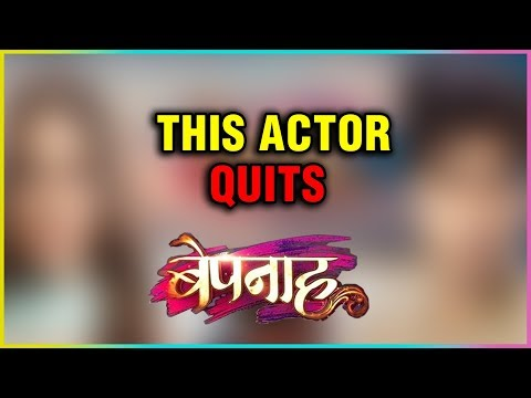 This Bepannah Actor Quits The Show | Last Day Cake Cutting