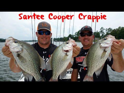 Santee Cooper Summer Crappie Fishing