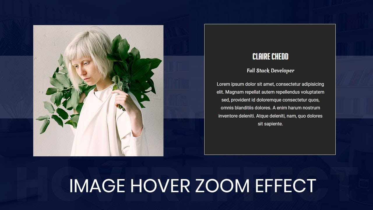 CSS3 Image Hover with zoom Effects ( with codes ) : css