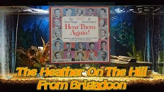 The Heather On The Hill   From Brigadoon   Jane Powell and Robert Merrill