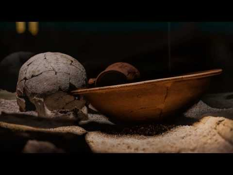 DIIS MANIBUS - Rituals of Death During the Roman Age