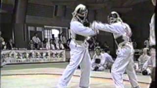 日本拳法協会 全国拳法選手権大会 平成10年 1/2