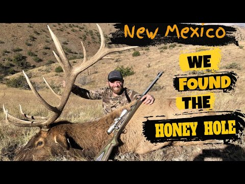 ELK HUNTING// New Mexico 1st Day Bull At Love Of The Hunt Outfitters