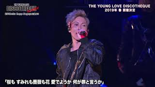THE YOUNG LOVE DISCOTHEQUE 2019 (ヤング・ラブ・ディスコティック) ...