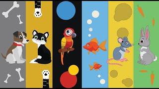 Bajka zwierzęta domowe - bajka dla dzieci - nauka zwierząt - odgłosy zwierząt