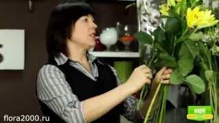 как выбрать цветы мужчине  ОПРОС МУЖЧИН