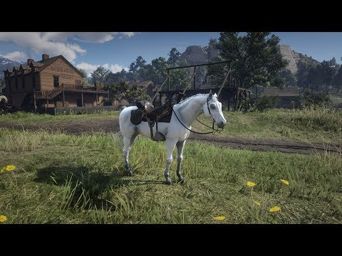 Red Dead 2: How to get the elite white horse