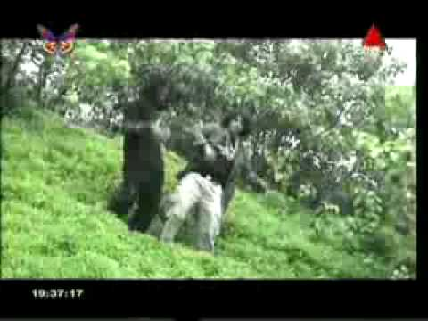 Wela Laga Dagakarana - This Video Copied from Sirasa TV by W@creative Lab member Lahiru Madusanka