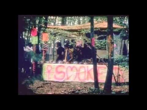 Dialectical Inquiry Sam Watson 110453   1960s Hippie Counterculture