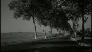 Les nouvelles vagues (1959-1973)