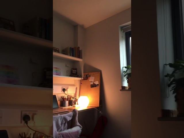 Lovely flat in heart of Newcastle £100 pw! Main Photo