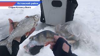 Рыбалка на течении на крупную рыбу а вся рыба у берега река Волга старое Кстово