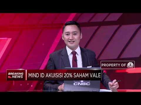 MIND ID Akuisisi 20% Saham Vale